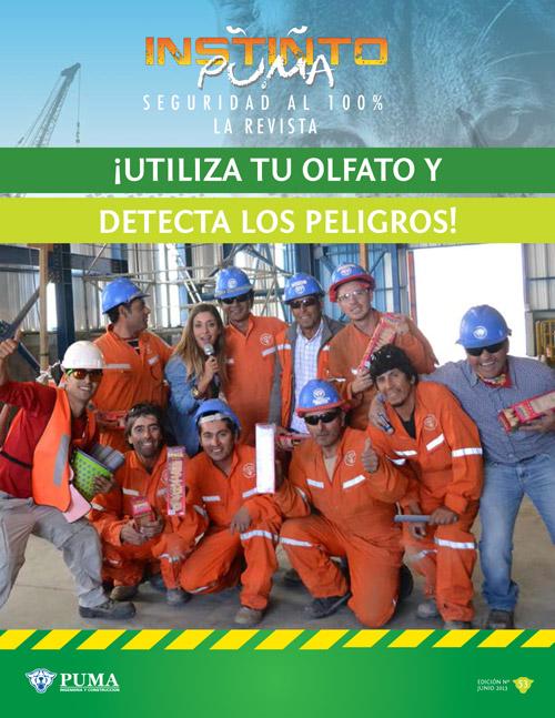 Revista Instinto Puma Nº53