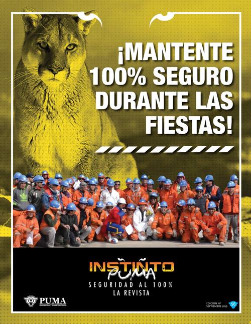 Revista Instinto Puma Nº56